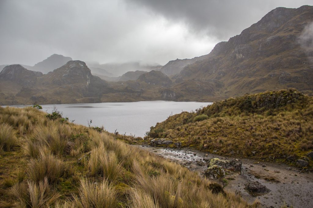 Laguna Toreadore im Cajas Nationalpark