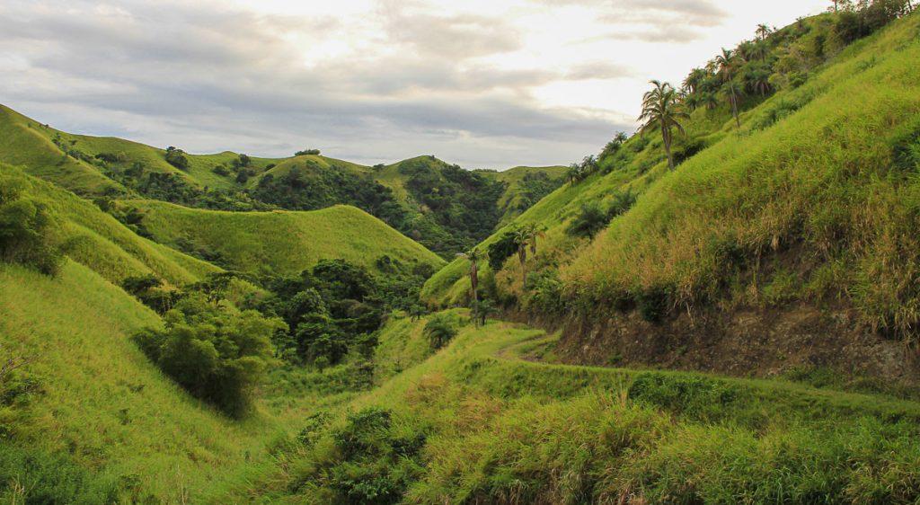 """Das """"Auenland"""" auf Tobago"""