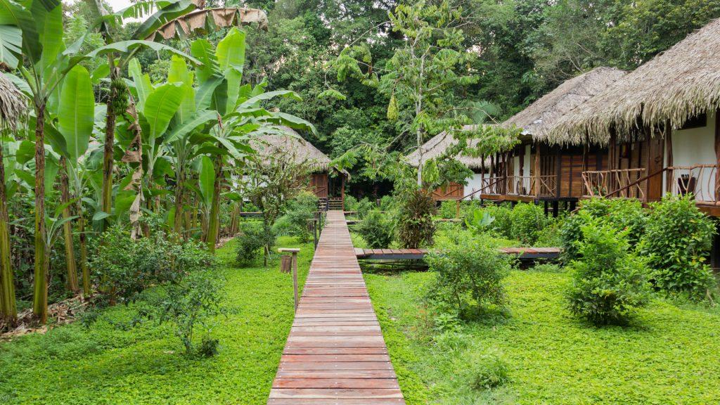 Die Sacha Lodge in Ecuador