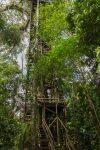 traditioneller Holzturm der Sacha Lodge