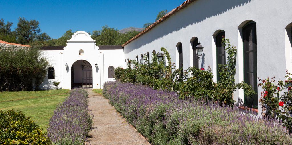 vorbei an duftendem Lavendel ins erste Wein-SPA in Südamerika