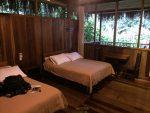 Mein Zimmer in der Sacha Lodge mit Blick in den Urwald