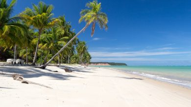 Photo of Maragogi in Alagoas | Brasiliens karibischer Traumstrand