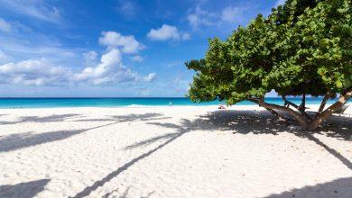 Photo of Die karibische Trauminsel Aruba ist One Happy Island
