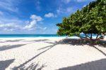 Am Eagle Beach auf Aruba