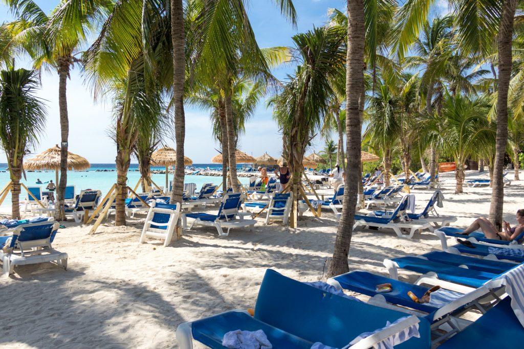 Palmen und Liegen am Flamingo-Strand
