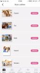 MyPostcard App - viele ansprechende Layouts