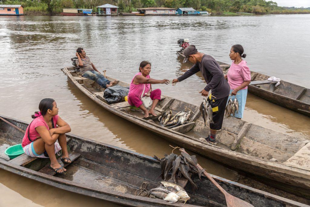 Geht es frischer, als den Fisch direkt vom Boot zu kaufen?
