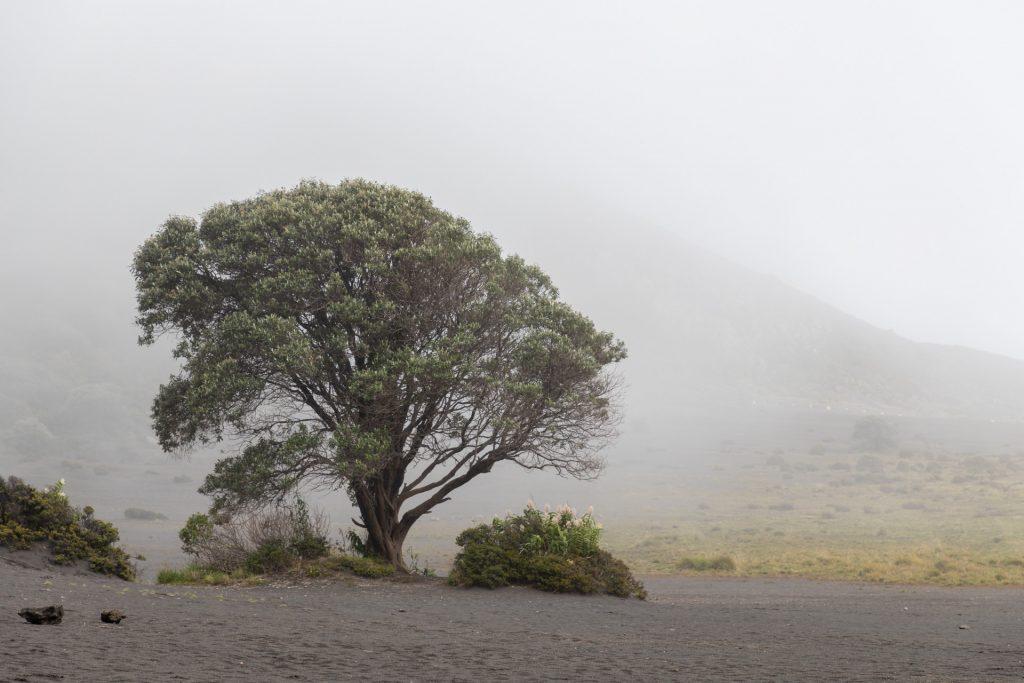 Der Vulkan Irazú kann auch mystisch