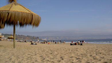 Bild von Chile: Die Top 7 Aktivitäten in Viña del Mar