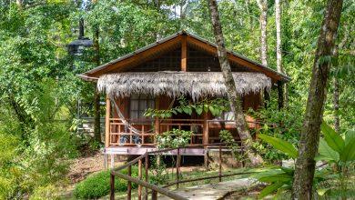 Photo of Die Hidden Paradise Lodge in Drake Bay, Costa Rica