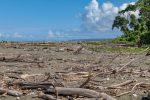 die wilde Küste vom Corcovado Nationalpark