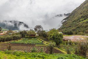 Blick über den Gemüsegarten ins Tal