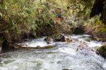 der Rio Papallacta