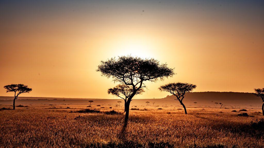 spektakulärer Sonnenuntergang in der kenianischen Savanne