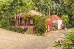Mount Gay Rum aus Barbados - alles original