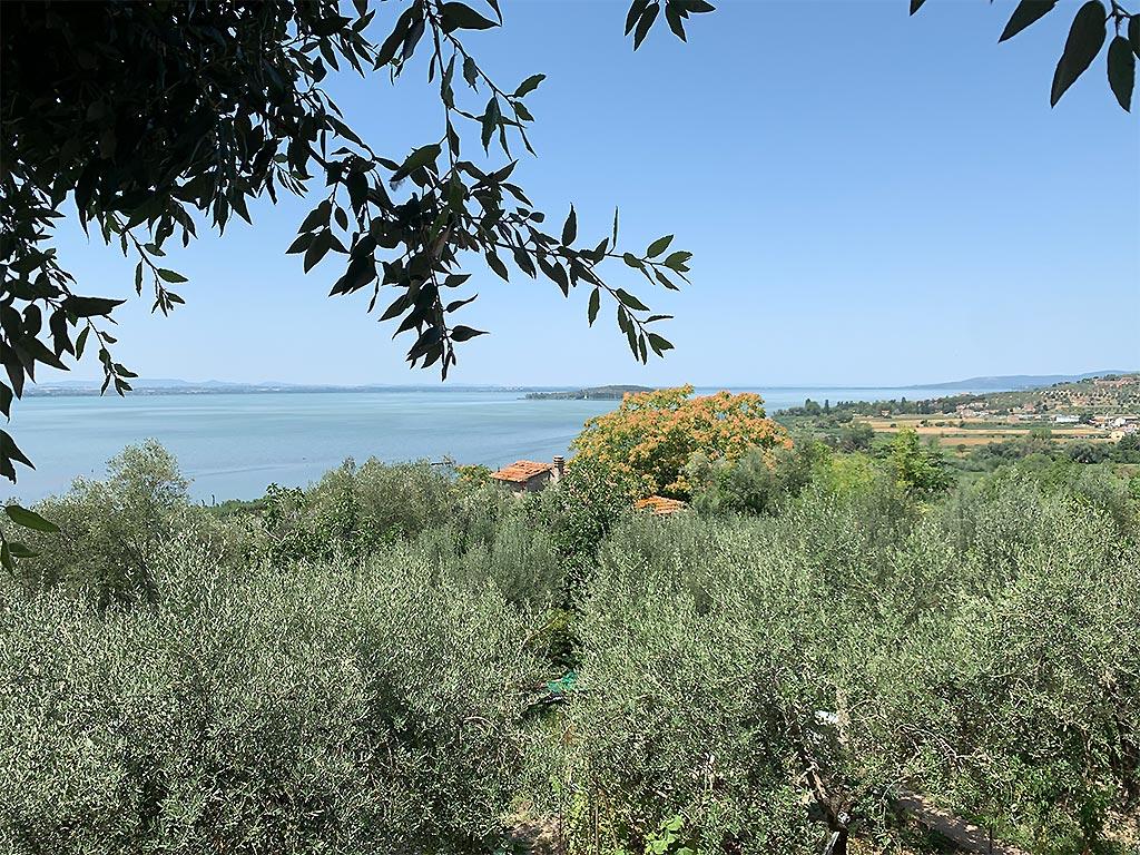 Lago Trasimeno Landschaft
