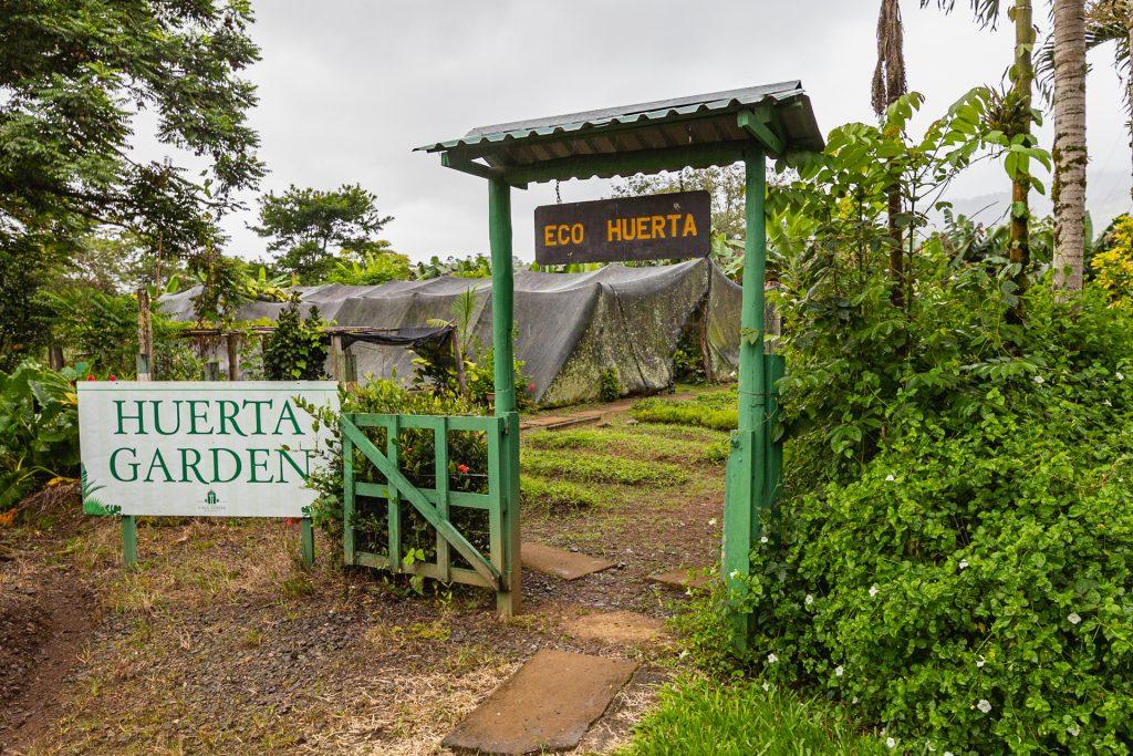 der ökologische Gemüsegarten