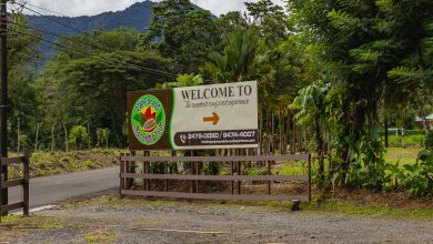 Die Rainforest Chocolate Tour bei La Fortuna