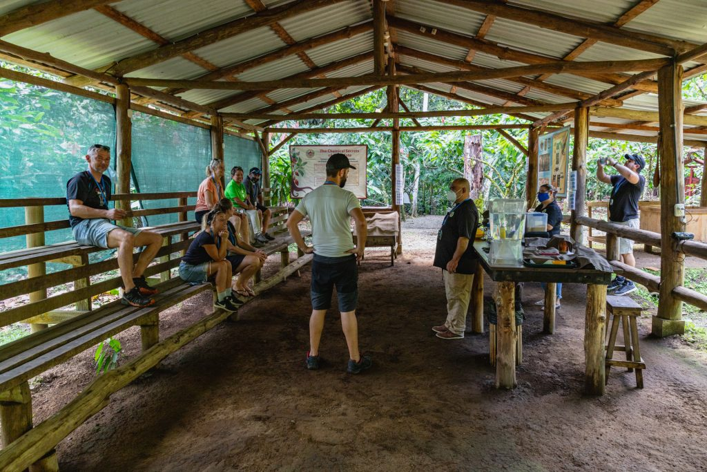 Die wichtigste Station auf Rainforest Chocolate Tour