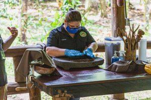 Walzen vom Kakao zwischen Steinen
