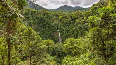 Der La Fortuna Wasserfall in Costa Rica