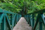 Brücken führen zum Wasserfall