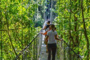 Hängebrücke im Park